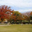 江戸川文化センター前の公園