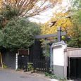 小松菜屋敷の秋