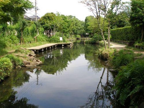 小松川境川親水公園の終点