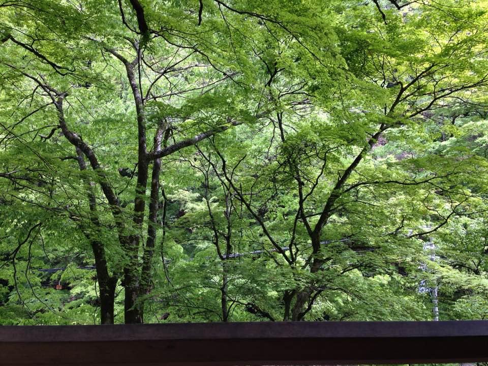 Kifune03_2