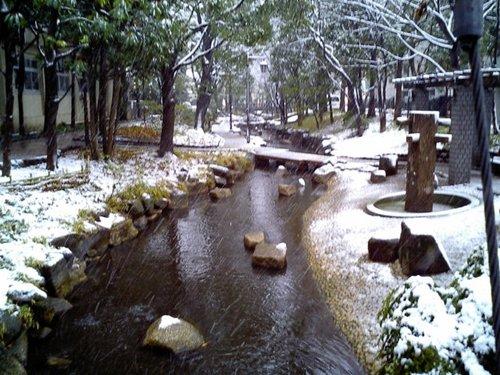 小松川雪景色